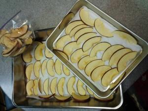 リンゴのドライチップ